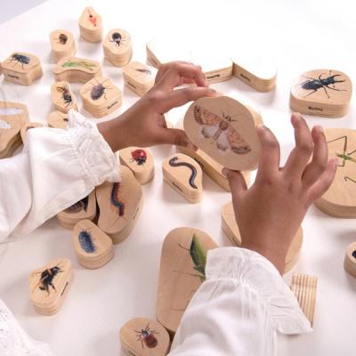 Wooden Minibeast Blocks - Set von 33