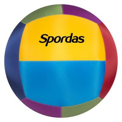 Bunter Spordas Cageball